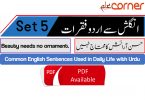 English to Urdu Sentences Spoken English Set 5, With PDF
