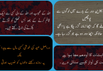 Click here to Download in pdf Best Urdu Quotes Islamic | Inspirational Islamic Quotes in Urdu