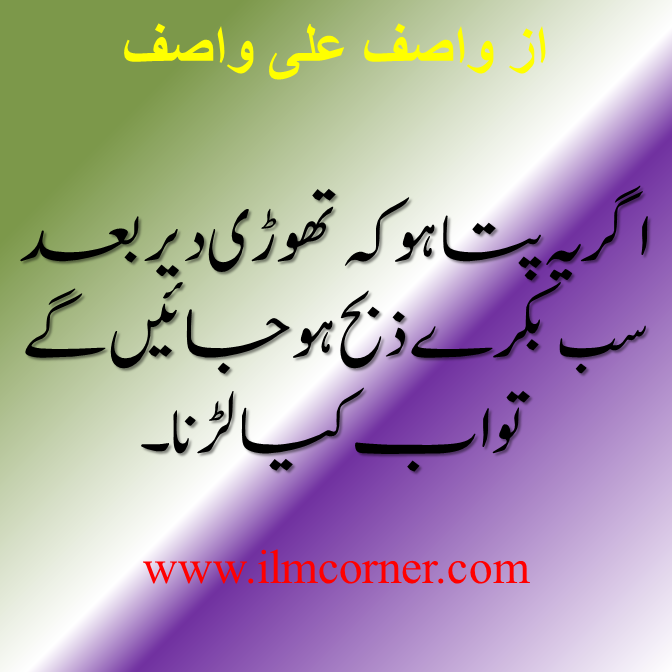 Ashfaq Ahmed Quotes