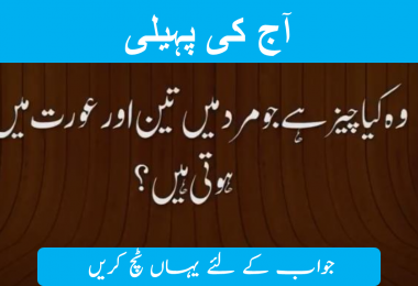 Mind riddles in urdu