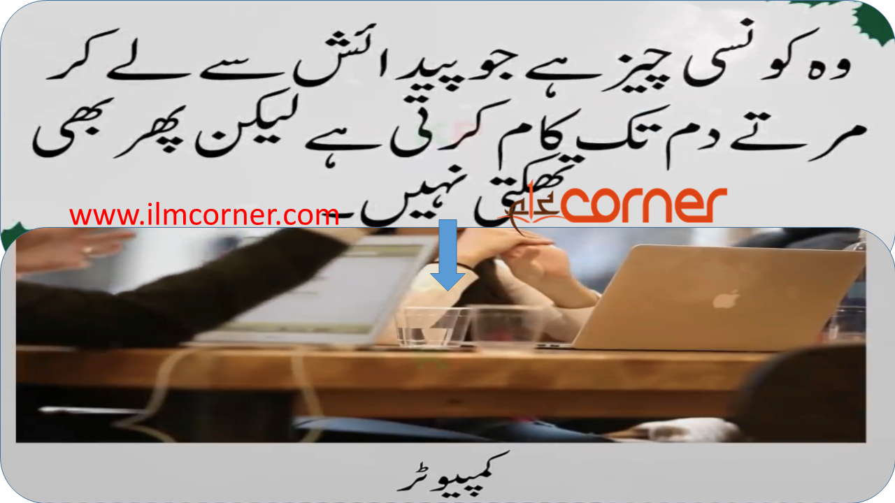 Famous urdu riddles with answers
